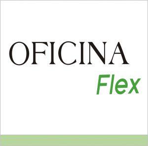 novidade FLEX 2019